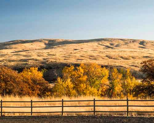 Cowiche Canyon Conservancy Snow Mountain Ranch Fall Colors Hiking Trails Yakima, WA Conservation Photo: David Hagen