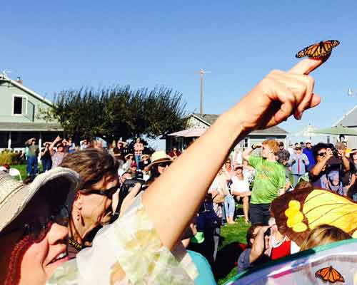 MUSIC & MONARCHS BUTTERFLY RELEASE PARTY 2018 Cowiche Canyon Conservancy Conservation Recreation