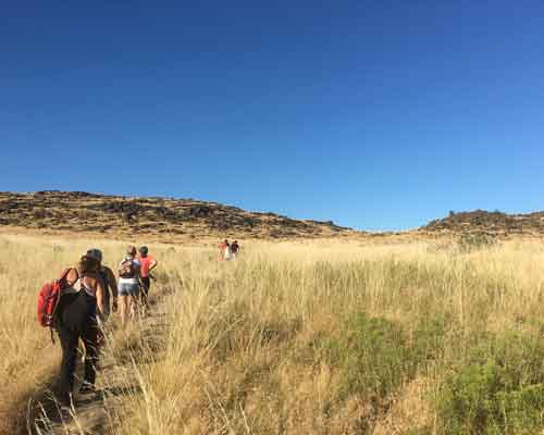 Cowiche Canyon Conservancy Winery Hiking Group Trails Yakima, WA Conservation Photo: Lauren Leakey