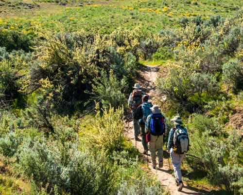 Cowiche Canyon Conservancy Hiking Recreation Shrub-Steppe Photo: David Hagen