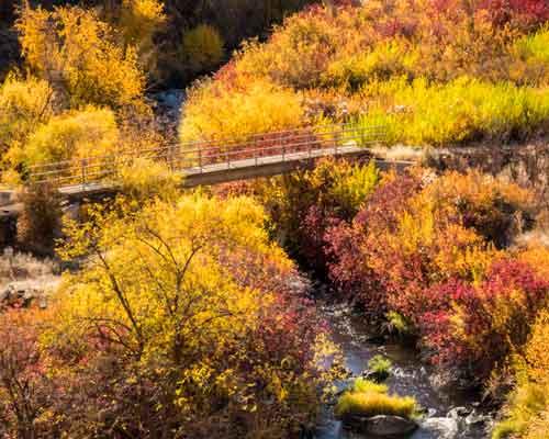 Cowiche Canyon Conservancy Hiking Wildflowers Cowiche Creek Bridge Recreation Shrub-Steppe Photo: David Hagen