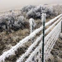 Cowiche Canyon Conservancy Hiking Winter Frost Snow Mountain Ranch Recreation Shrub-Steppe Photo: James Legatt