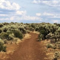 Cowiche Canyon Conservancy Uplands Hiking Recreation Yakima, WA Trails Shrub-Steppe Donate