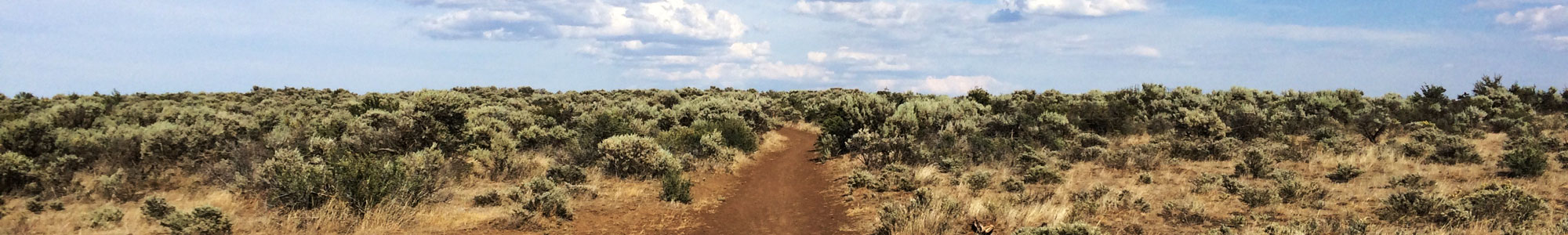 Cowiche Canyon Conservancy Uplands Hiking Recreation Yakima, WA Trails Shrub-Steppe Donate