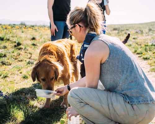 Cowiche Canyon Conservancy Dog Hiking Recreation Yakima, WA Photo: Nate Monick