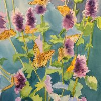 Cate 1 Fritillary Butterflies on Sage