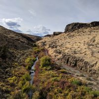 canyon_fall_creek_3_2019